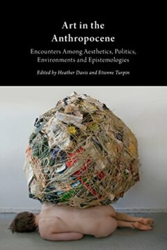 Cover art for Art in the Anthropocene: Encounters Among Aesthetics, Politics, Environments and Epistemologies