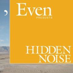 Cover art for Hidden Noise