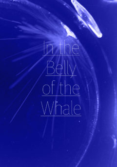 Cover art for In the Belly of the Whale