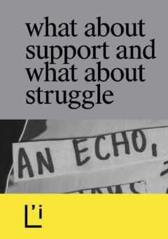 Cover art for What About Support and What About Struggle