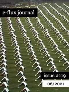 Cover art for e-flux Journal #119