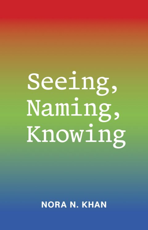 Cover art for Seeing, Naming, Knowing